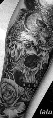 фото тату сова с черепом от 23.10.2017 №034 — tattoo owl with a skull — tatufoto.com