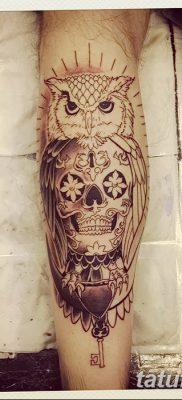 фото тату сова с черепом от 23.10.2017 №035 – tattoo owl with a skull – tatufoto.com