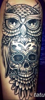 фото тату сова с черепом от 23.10.2017 №042 – tattoo owl with a skull – tatufoto.com