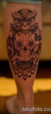 фото тату сова с черепом от 23.10.2017 №044 — tattoo owl with a skull — tatufoto.com