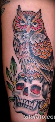 фото тату сова с черепом от 23.10.2017 №047 – tattoo owl with a skull – tatufoto.com
