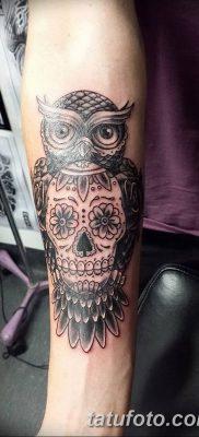 фото тату сова с черепом от 23.10.2017 №049 — tattoo owl with a skull — tatufoto.com