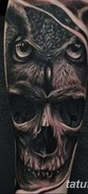 фото тату сова с черепом от 23.10.2017 №060 – tattoo owl with a skull – tatufoto.com