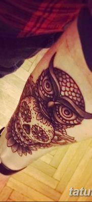 фото тату сова с черепом от 23.10.2017 №068 – tattoo owl with a skull – tatufoto.com