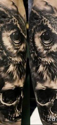 фото тату сова с черепом от 23.10.2017 №071 – tattoo owl with a skull – tatufoto.com