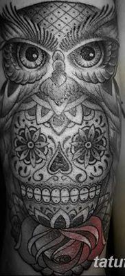 фото тату сова с черепом от 23.10.2017 №076 – tattoo owl with a skull – tatufoto.com