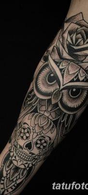 фото тату сова с черепом от 23.10.2017 №078 — tattoo owl with a skull — tatufoto.com