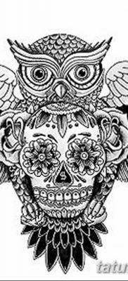 фото тату сова с черепом от 23.10.2017 №079 — tattoo owl with a skull — tatufoto.com