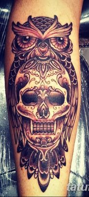 фото тату сова с черепом от 23.10.2017 №084 – tattoo owl with a skull – tatufoto.com