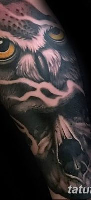 фото тату сова с черепом от 23.10.2017 №092 – tattoo owl with a skull – tatufoto.com