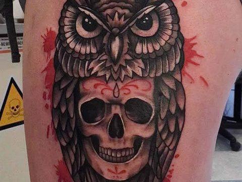 фото тату сова с черепом от 23.10.2017 №115 - tattoo owl with a skull - tatufoto.com