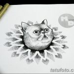 фото эскизы тату дотворк от 10.10.2017 №227 - sketches tattoo dotwork - tatufoto.com