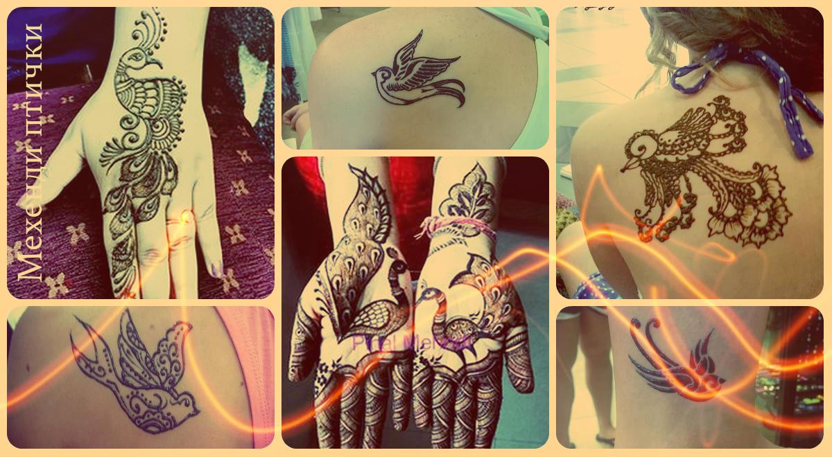 Мехенди птички (рисунки хной) - фото примеры готовых рисунков хной с птицей