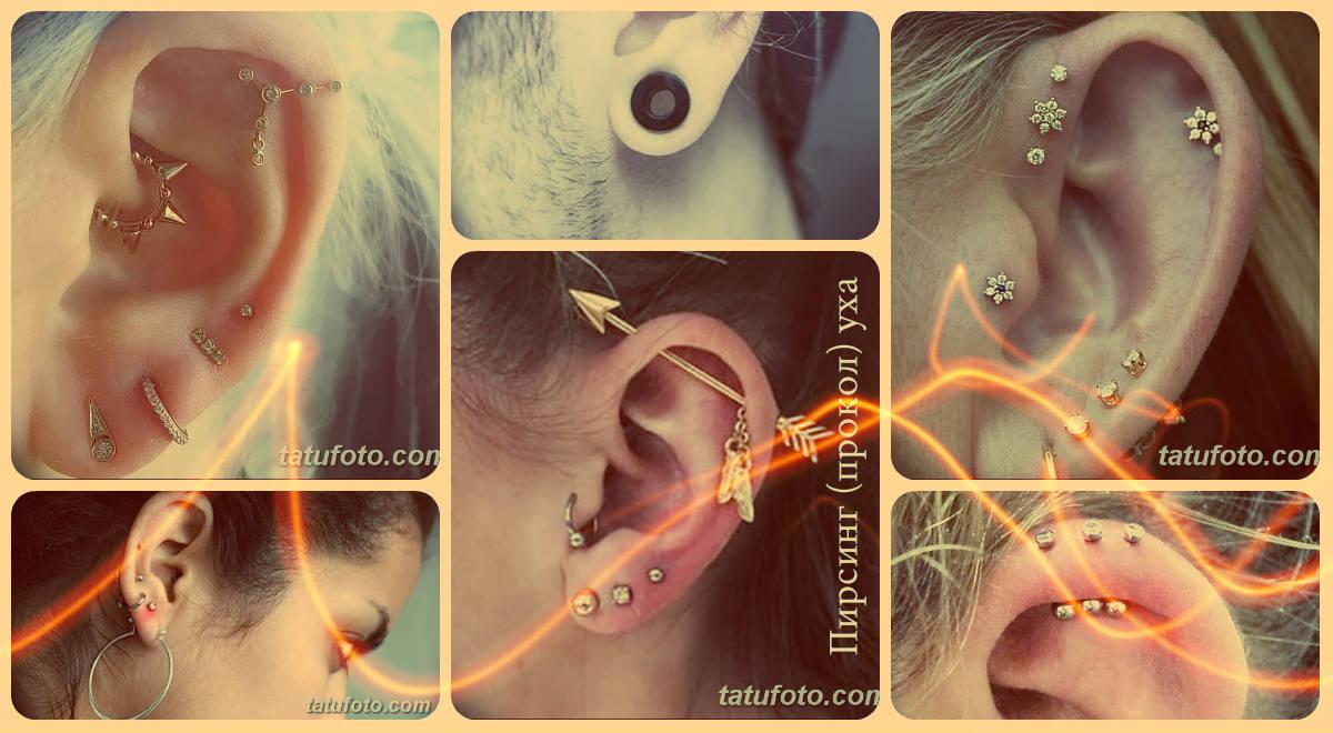 Пирсинг (прокол) уха - фото примеры готовых вариантов