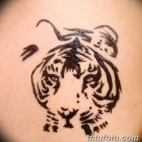 Мехенди тигр (рисунок хной)