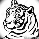 фото Мехенди тигр от 10.11.2017 №007 - Mehendi Tiger - tatufoto.com