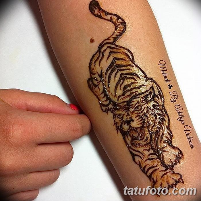 фото Мехенди тигр от 10.11.2017 №008 - Mehendi Tiger - tatufoto.com