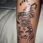 фото Мехенди тигр от 10.11.2017 №016 - Mehendi Tiger - tatufoto.com