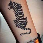 фото Мехенди тигр от 10.11.2017 №020 - Mehendi Tiger - tatufoto.com
