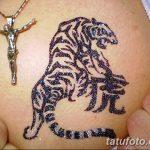 фото Мехенди тигр от 10.11.2017 №027 - Mehendi Tiger - tatufoto.com 246234