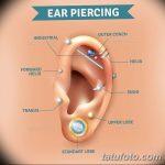 фото Пирсинг уха от 20.11.2017 №115 - Ear piercing - tatufoto.com