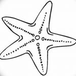 фото Эскизы тату морская звезда от 31.10.2017 №009 - Sketches of a starfish tattoo