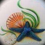 фото Эскизы тату морская звезда от 31.10.2017 №014 - Sketches of a starfish tattoo