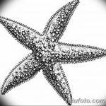 фото Эскизы тату морская звезда от 31.10.2017 №015 - Sketches of a starfish tattoo
