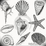 фото Эскизы тату морская звезда от 31.10.2017 №018 - Sketches of a starfish tattoo