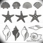 фото Эскизы тату морская звезда от 31.10.2017 №029 - Sketches of a starfish tattoo