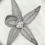 фото Эскизы тату морская звезда от 31.10.2017 №037 - Sketches of a starfish tattoo