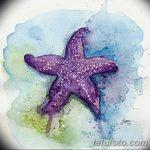 фото Эскизы тату морская звезда от 31.10.2017 №052 - Sketches of a starfish tattoo