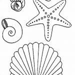 фото Эскизы тату морская звезда от 31.10.2017 №053 - Sketches of a starfish tattoo