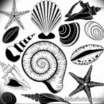 фото Эскизы тату морская звезда от 31.10.2017 №060 - Sketches of a starfish tattoo