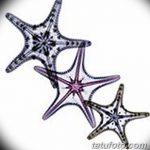 фото Эскизы тату морская звезда от 31.10.2017 №068 - Sketches of a starfish tattoo