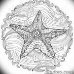 фото Эскизы тату морская звезда от 31.10.2017 №072 - Sketches of a starfish tattoo