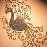 фото рисунок птица хной от 10.11.2017 №033 - drawing a henna bird - tatufoto.com