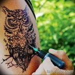 фото рисунок птица хной от 10.11.2017 №044 - drawing a henna bird - tatufoto.com