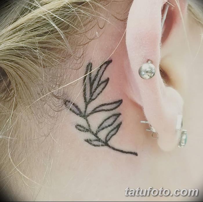 фото тату оливковая ветвь от 13.11.2017 №032 - olive branch tattoo - tatufoto.com