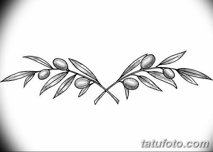 фото тату оливковая ветвь от 13.11.2017 №065 - olive branch tattoo - tatufoto.com