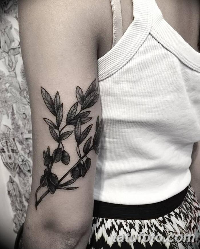 фото тату оливковая ветвь от 13.11.2017 №074 - olive branch tattoo - tatufoto.com