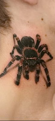 фото тату тарантул от 21.11.2017 №003 – tattoo tarantula – tatufoto.com