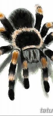фото тату тарантул от 21.11.2017 №004 – tattoo tarantula – tatufoto.com