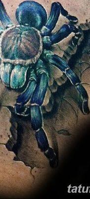 фото тату тарантул от 21.11.2017 №005 – tattoo tarantula – tatufoto.com