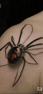 фото тату тарантул от 21.11.2017 №006 – tattoo tarantula – tatufoto.com