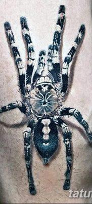 фото тату тарантул от 21.11.2017 №014 – tattoo tarantula – tatufoto.com
