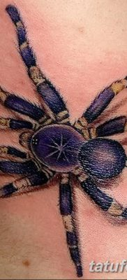 фото тату тарантул от 21.11.2017 №016 – tattoo tarantula – tatufoto.com