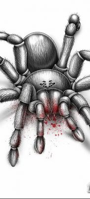 фото тату тарантул от 21.11.2017 №018 – tattoo tarantula – tatufoto.com