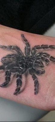 фото тату тарантул от 21.11.2017 №021 – tattoo tarantula – tatufoto.com