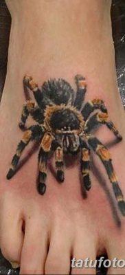 фото тату тарантул от 21.11.2017 №022 – tattoo tarantula – tatufoto.com
